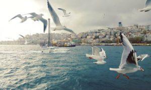 رحلات مدينة اسطنبول